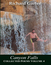 cover of Canyon Falls